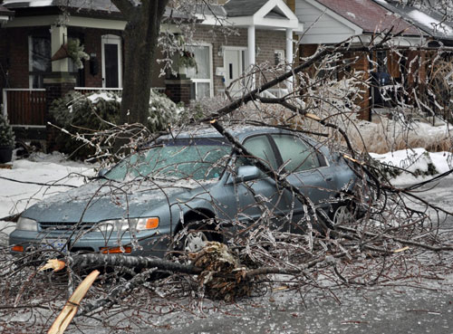 Ice storm: branches on car and street