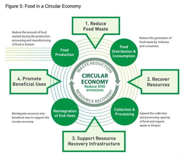 Food_in_a_circular_economy.JPG