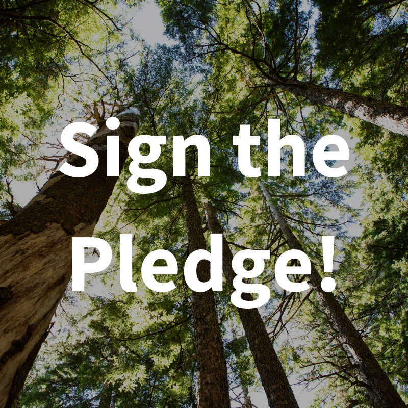Sign_the_Pledge!.png