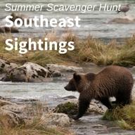 Southeast_Sightings.jpg