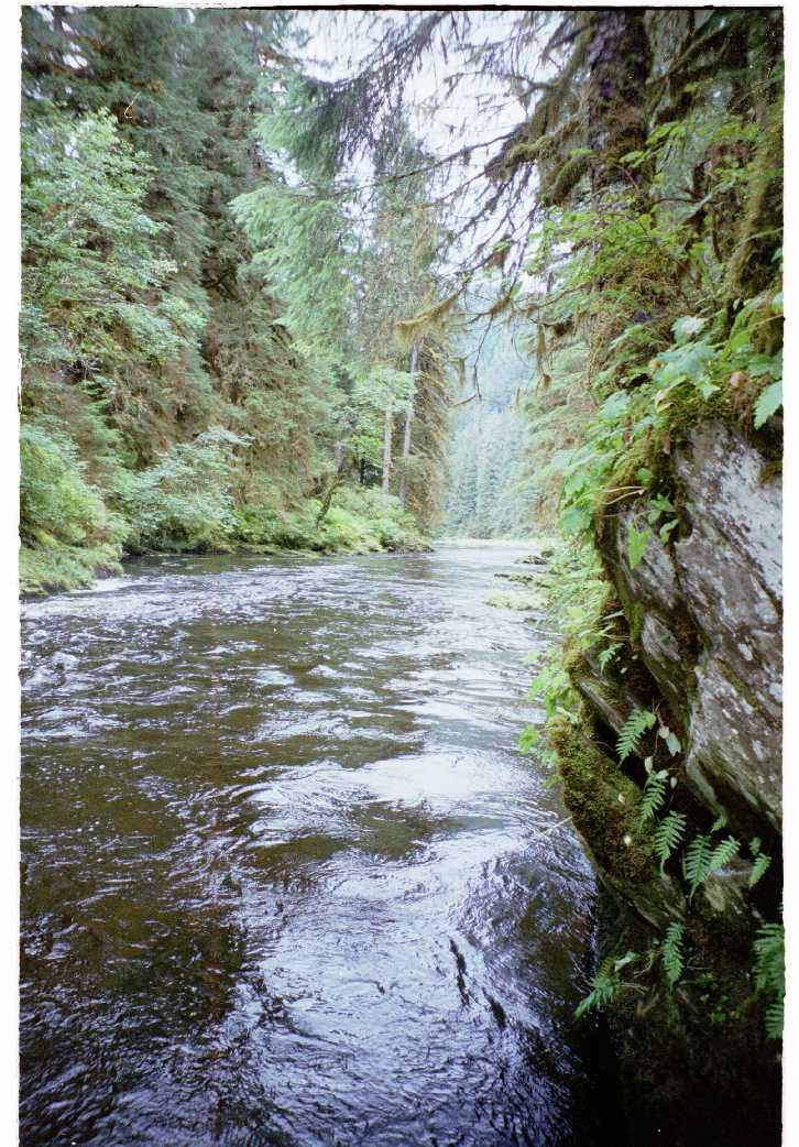 Naha_River_(1)_-_Photograph_by_Mark_Edwards.jpeg