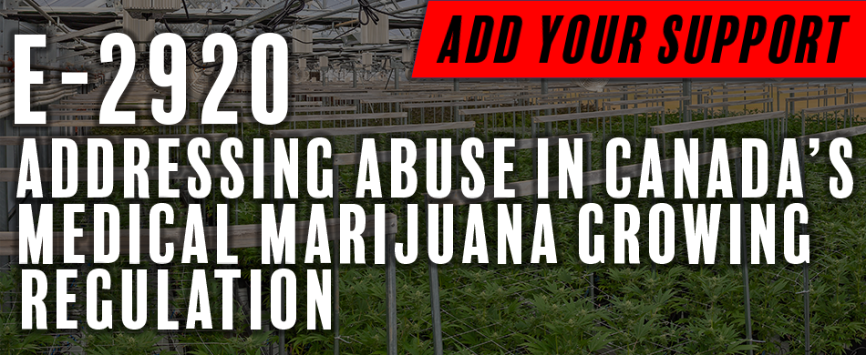 Tony Urges e-Petition Action to Address Cannabis Framework Loopholes