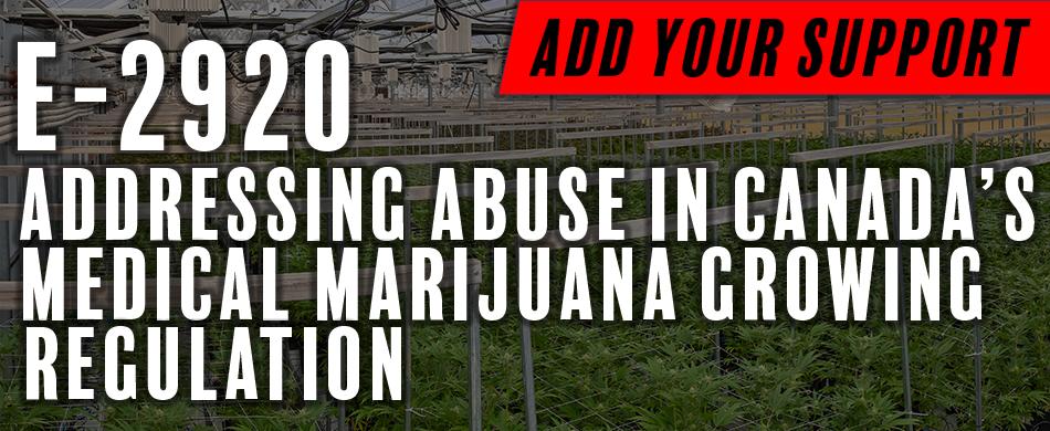 Tony Urges e-Petition Action to Address Cannabis Framework Loopholes