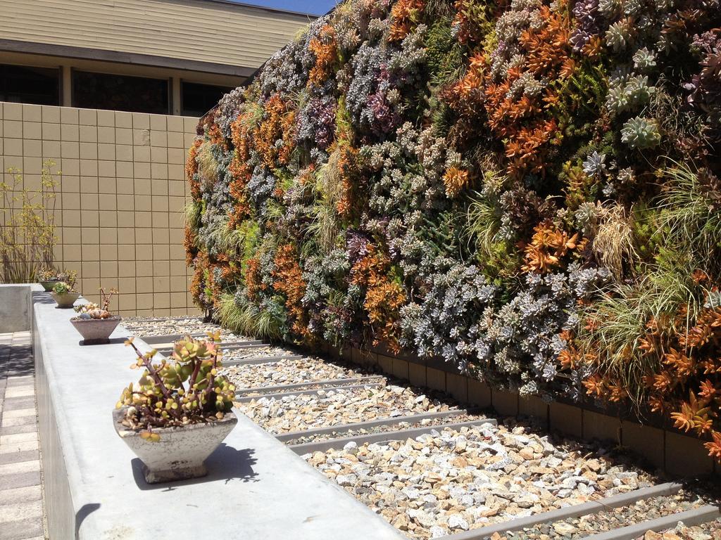 Succulent_Wall.jpg