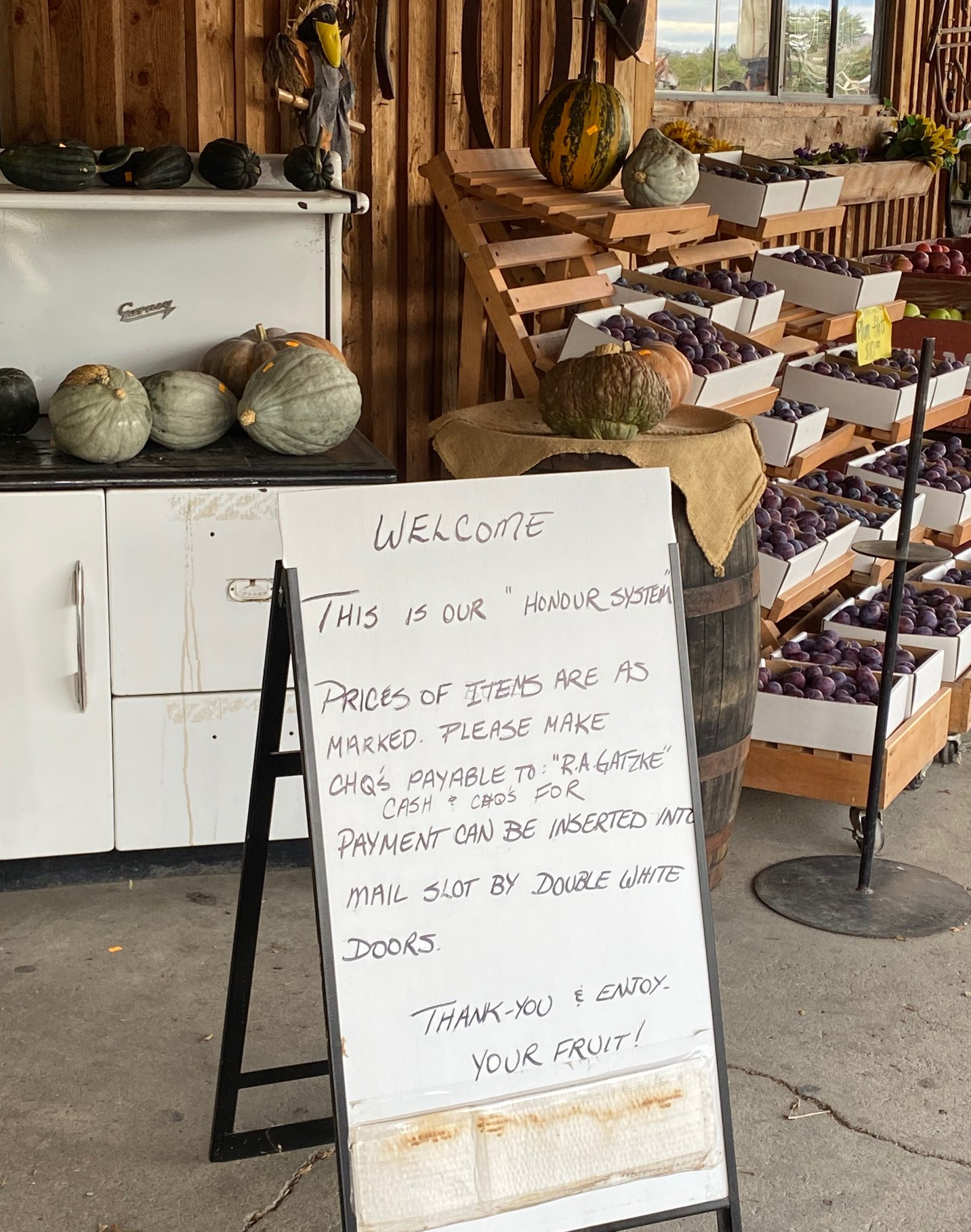 Stopping by Gatzke's Orchard in Oyama
