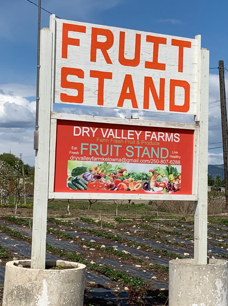 Small Business Spotlight: Dry Valley Farms