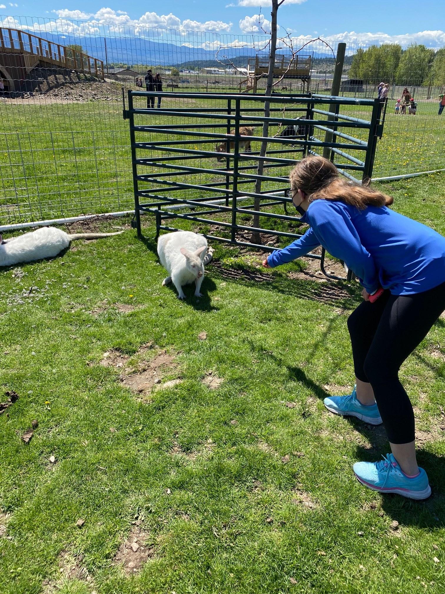 Small Business Spotlight and Tourism Week: Kangaroo Creek Farm