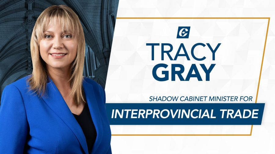 Statement: MP Gray appointed to Shadow Cabinet