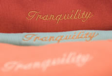 Shannon's Review of Tranquility Day Spa