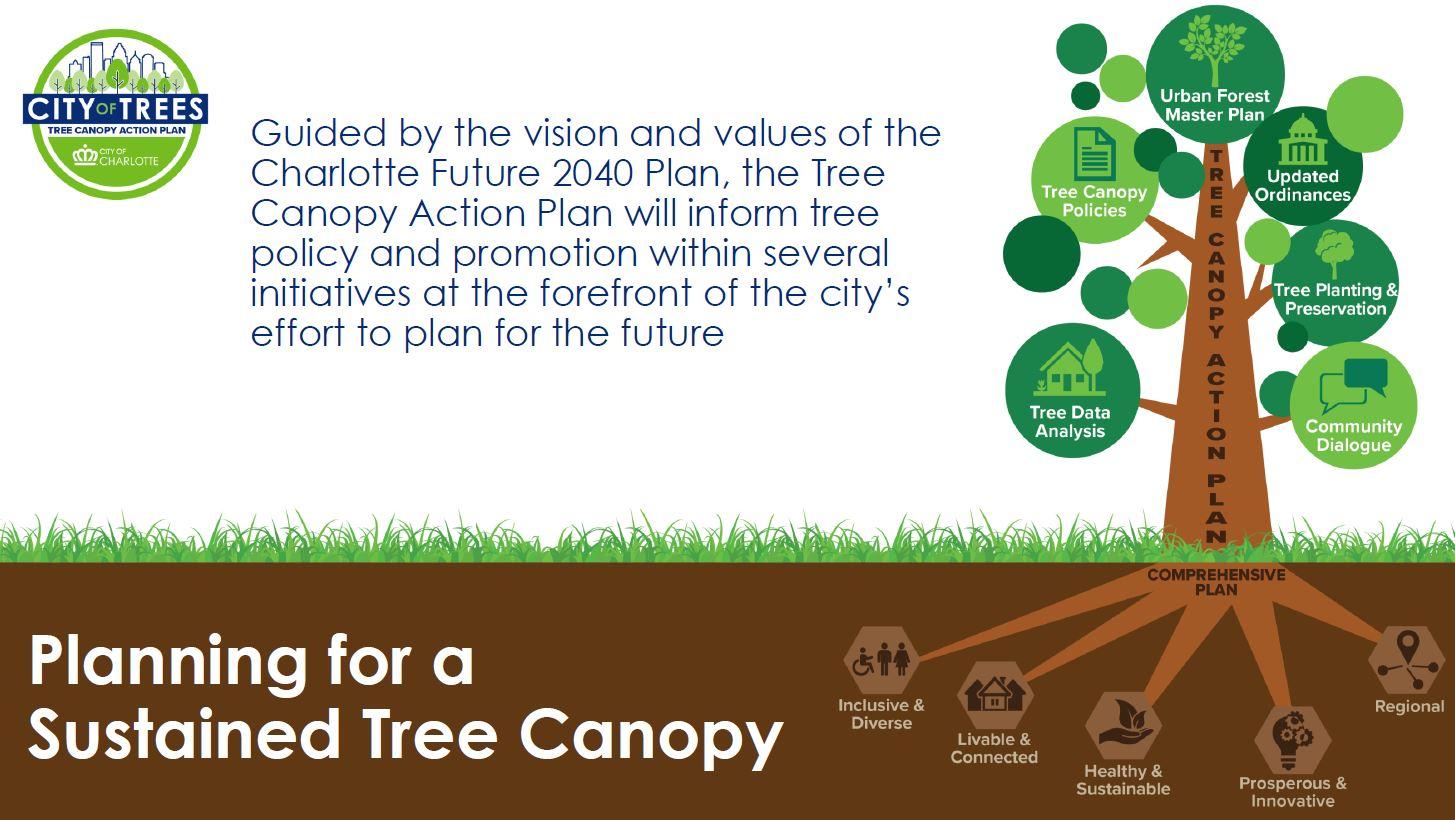 Tree_Canopy_Plan.JPG