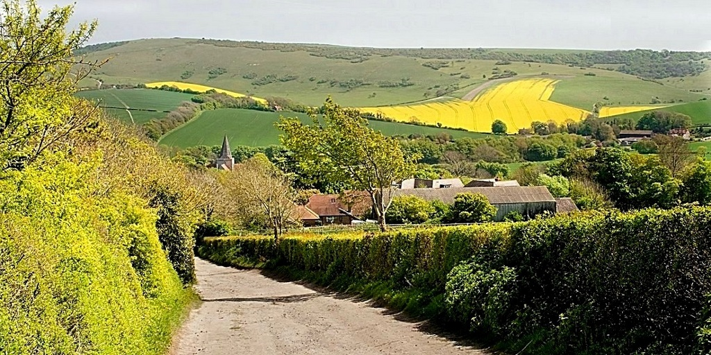 south_downs_lane.jpg