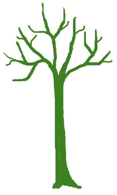 Post_13_-_Tall_Tree.jpg