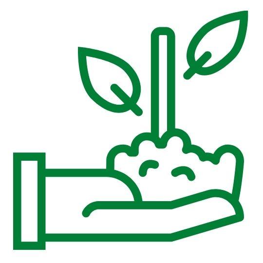 Plant_green.jpg