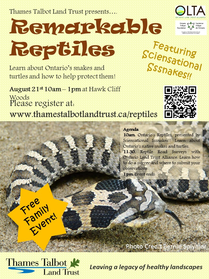 Remarkable_Reptiles_Poster.jpg