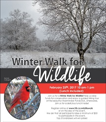 Winter_Walk_poster_(sponsors_cropped_and_sized_small).jpg