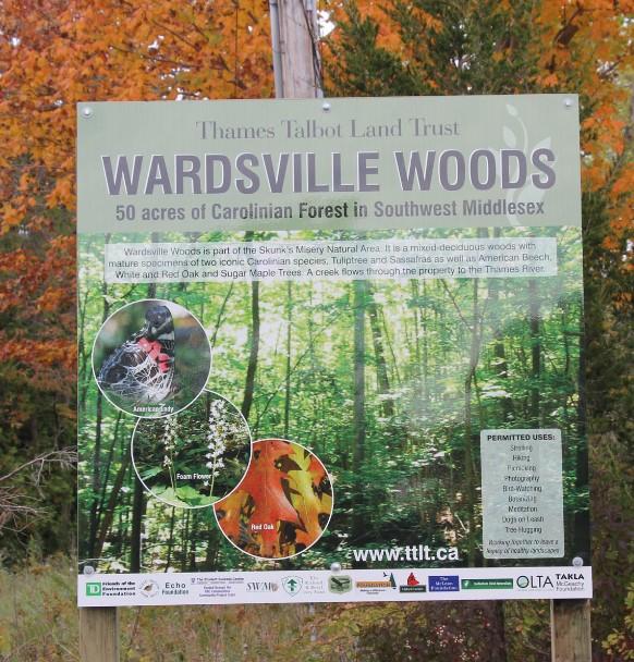 Wardsville.jpg