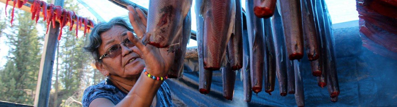 Fighting for Wild Salmon