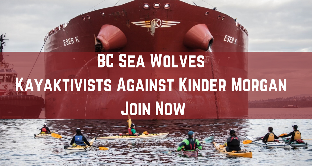 BC_Sea_Wolves_-_Kayaktivists_Against_Kinder_Morgan.png