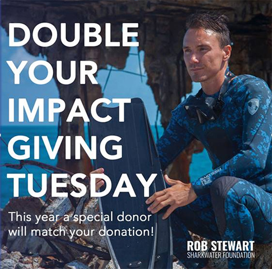 Double your impact now on #GivingTuesday