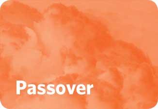 Passover-SMALLER.jpg