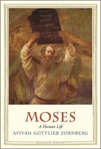 avivah_moses_book.jpg