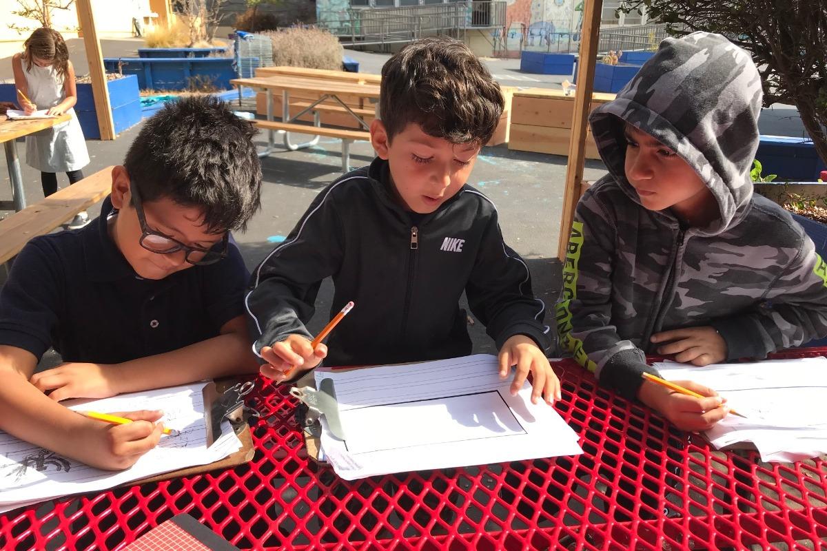 Three Students in Sage Yard