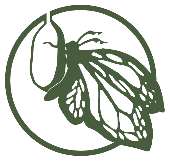 Camp Chrysalis logo