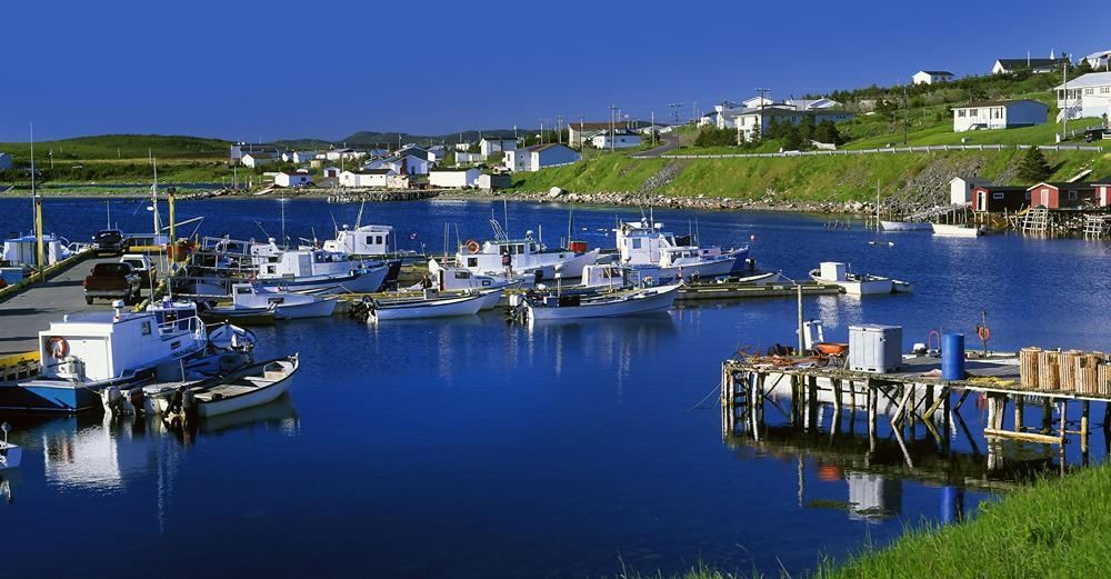 Fishing boats sit in calm blue waters in a small cove in Newfoundland.