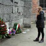 AR Auschwitz Jan 2015