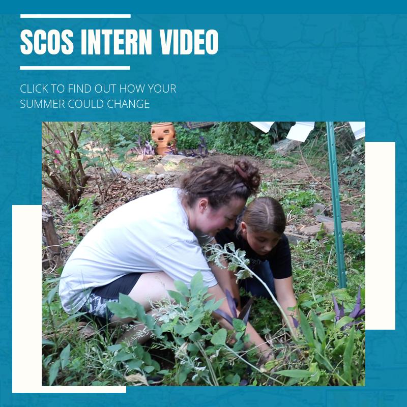 SCOS_RECAP_VIDEO_2018PIC.png