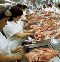 poultry-processing-irfan.jpg