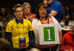 Delagats to the 30th General Synod debage motion.