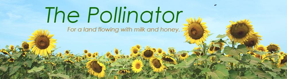 pollinator-newsletter