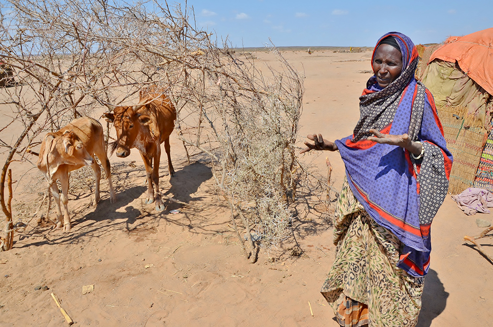 Ethiopia-Drought_Woman-2015.jpg