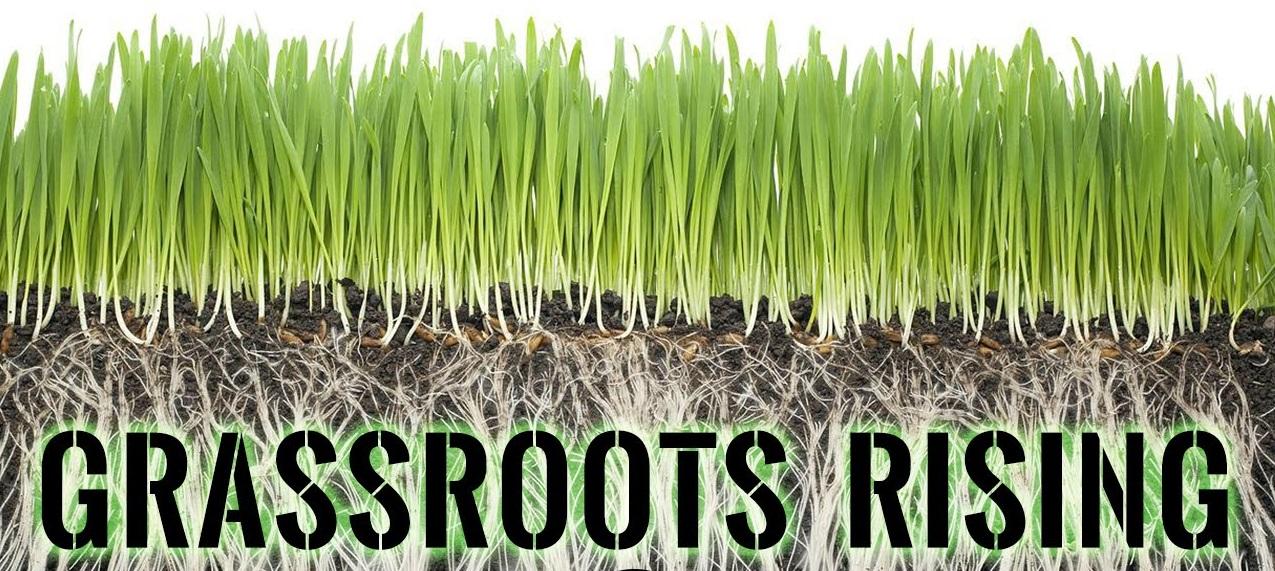 GrassrootsRising.jpg