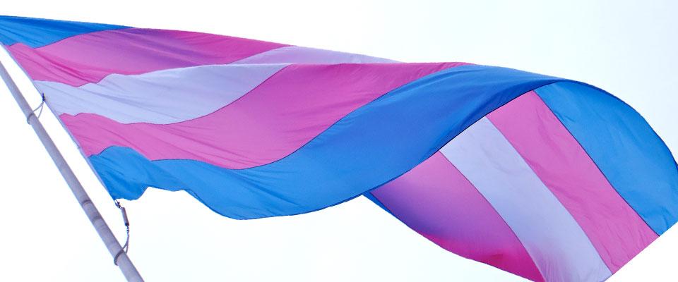 Transgender_Flag.jpg