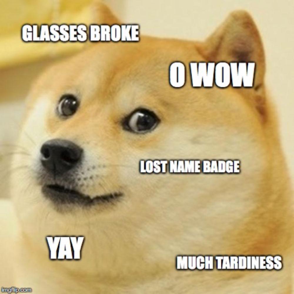 baddaydog.jpg