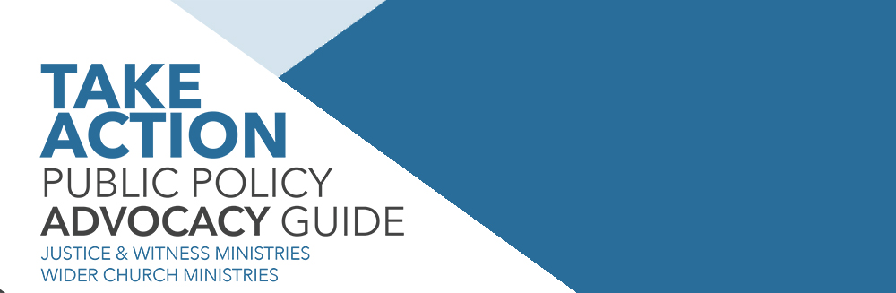 Public-Policy-Advocacy-Guide-2017.jpg