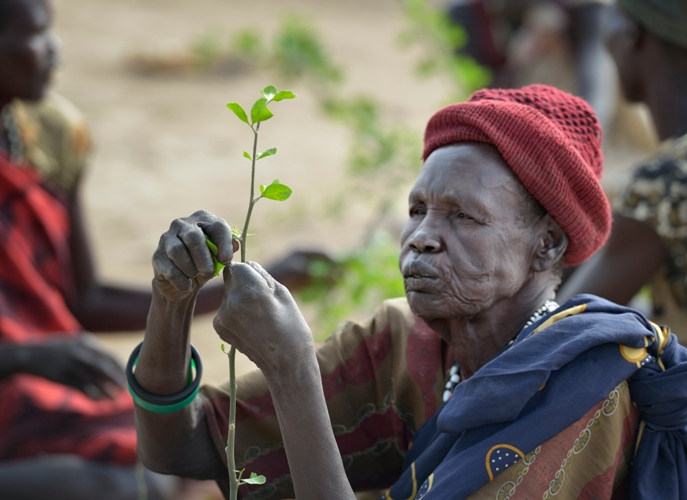 Sudanfamine.jpg
