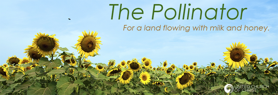 pollinator-rotator.jpg