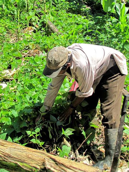 Nicaragua_Farmer_Rio_Coco.jpg