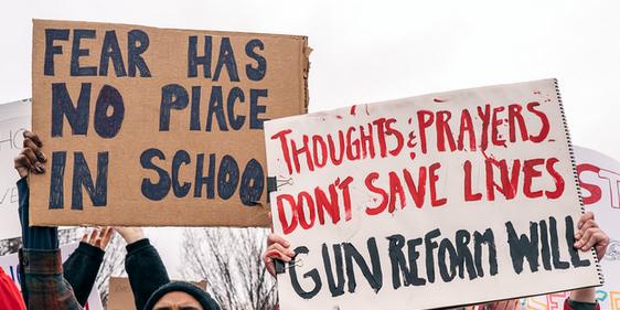 Gunreform.PNG