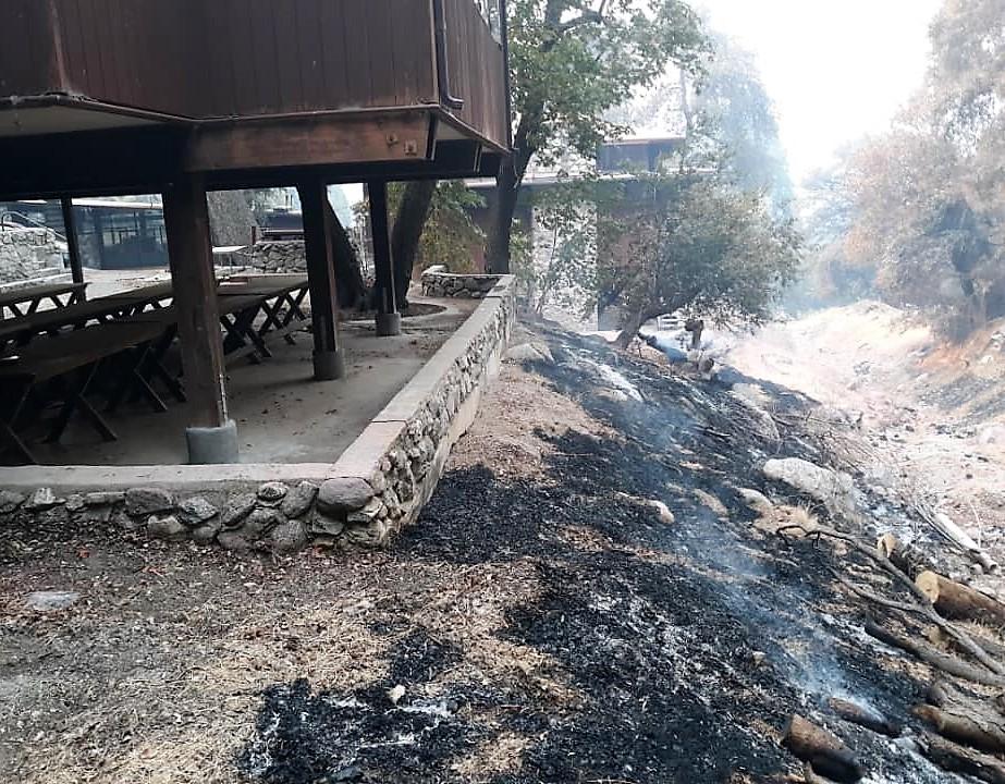 Pilgrim Pines fire line, 9/7/20