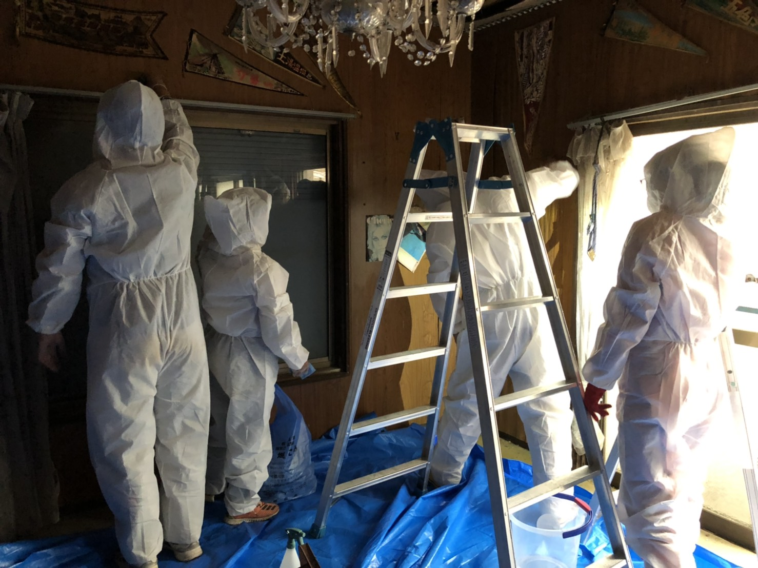 Mold_cleaning_in_a_damaged_house.jpg