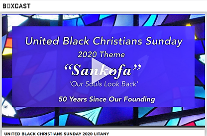 UBC 2020 video screen shot