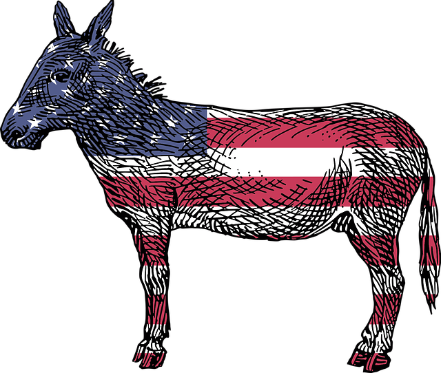donkey-2025465_640.png