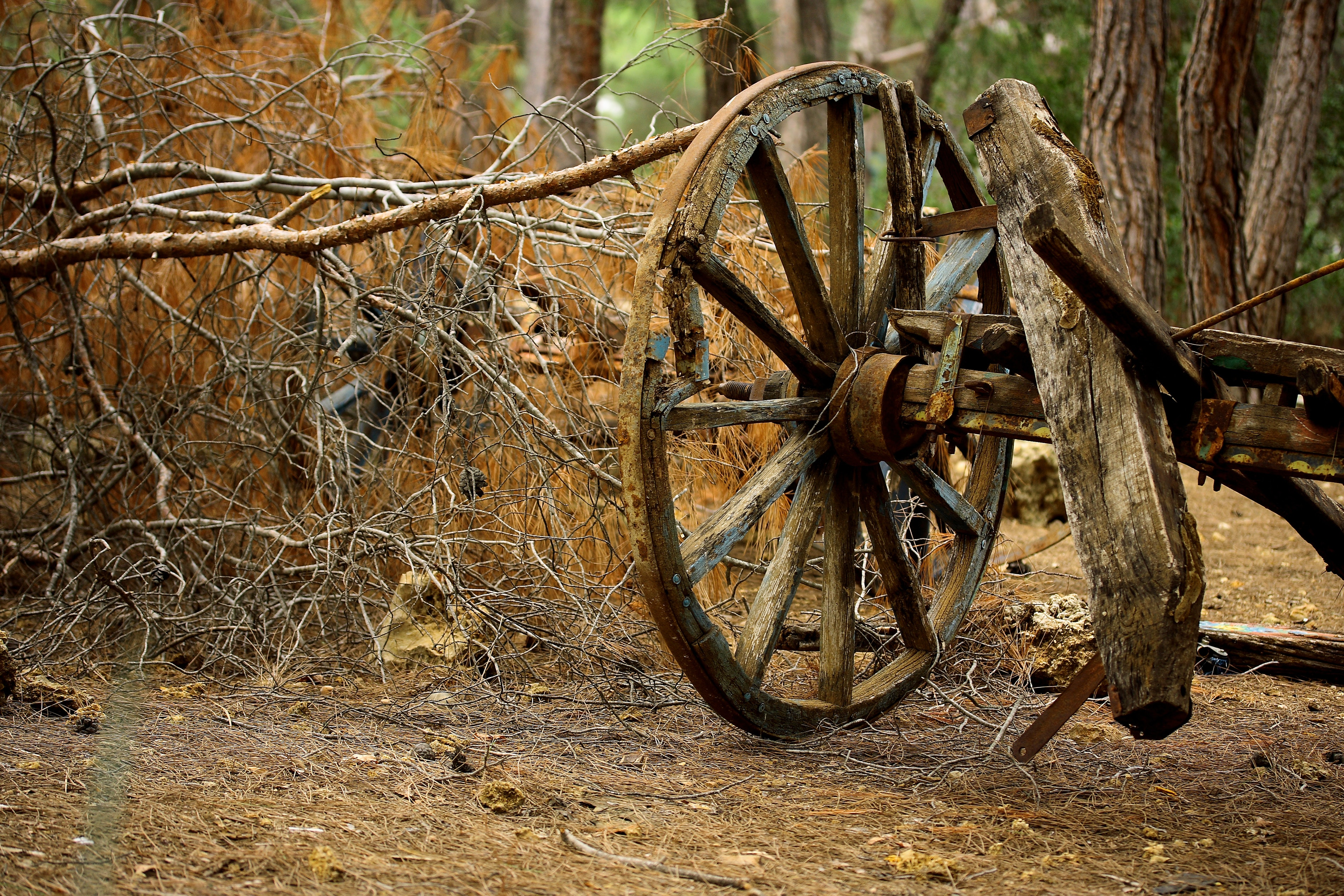 brown-carriage-wheel-1457806.jpg