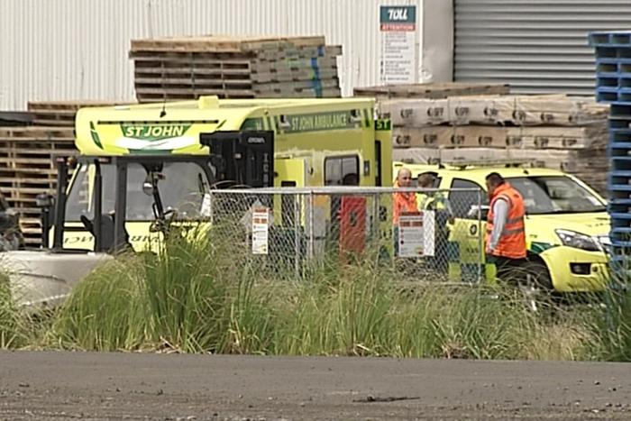 Auckland worker crushed to death by pallets