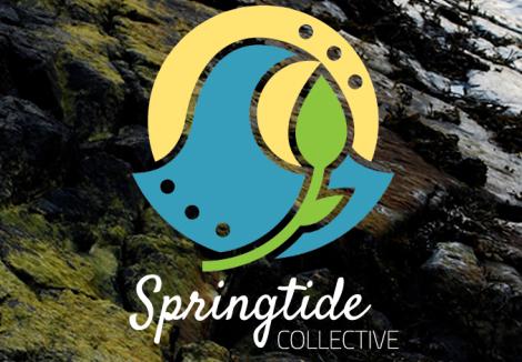 SpringtideCollective2.png