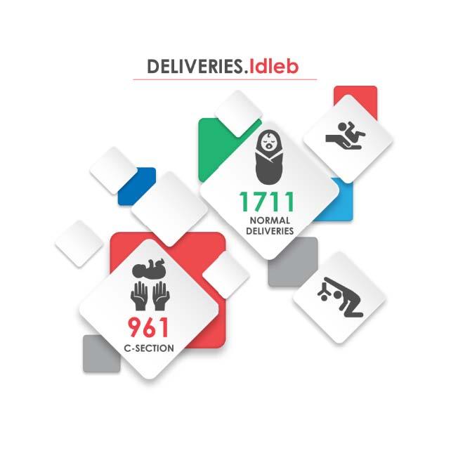 Fig._181.7_Number_of_Hospital_Deliveries__Idleb.jpg